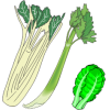 Leaf & leafstalk and blanched vegetables
