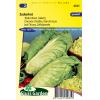 SL0035 - Chicorée à feuilles Zuckerhut (Pain de sucre)
