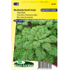 SL0270 - Curly Kale Late Autumn (Westlandse Herfst late)