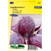 SL0295 - Red Cabbage Langedijker Bewaar 2