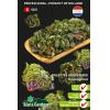 SL0301 - Kalettes Garden mix (flowersprout)