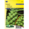 SL0315 - Brussels sprouts Amaroso F1