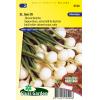 SL0540 - Onion small white-skinned, Barletta