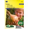 SL0560 - Onion The Kelsai