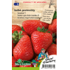 SL0571 - Strawberry Grandian F1 (large fruited)