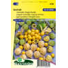 SL0580 - Pineapple Cherry SunFruit (Cape Gooseberry)
