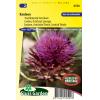 SL0590 - Artichoke Thislte, Cardoon (perennial)
