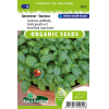 SL2012 - Sweet Basil, large leaved Genoveser - Gustosa
