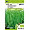 SL2036 - Bieslook grove Staro (Allium schoenoprasum)
