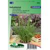 SL2040 - Chives Chinese, Garlic chives (Allium tuberosum)