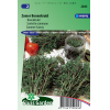 SL2045 - Bonekruid 1-Jarig (Satureja hortensis)