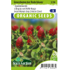 SL3296 - Green Manure Crop Crimson Clover