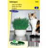 SL3300 - Cat grass